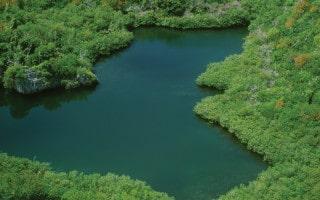 Blue Hole Park nature reserve in Bermuda