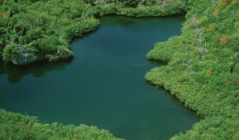Blue Hole Park nature reserve in Bermuda