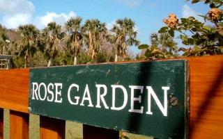 Rose garden at Bermuda Botanical Gardens