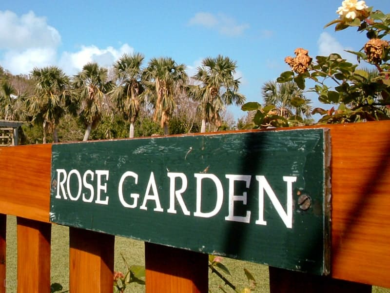 Rose garden at Bermuda Botanical Gardens