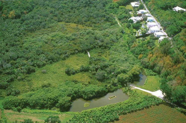 Aerial shot of Paget Marsh in Bermuda